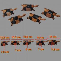 Famille de 5 tortues en bois