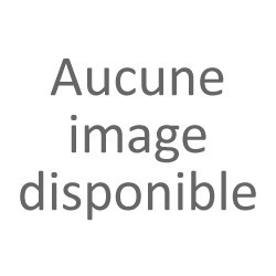 Ancienne amulette féminine Bembe